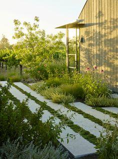 Back Gardens, Small Gardens, Outdoor Gardens, Modern Landscaping, Backyard Landscaping, Landscape Architecture, Landscape Design, Dream Garden, Garden Planning