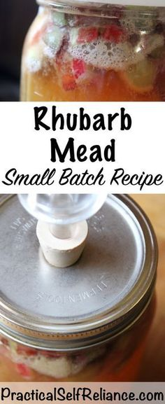 Spring Fermented Drink: Rhubarb Mead (Honey Wine) During the spring when rhubarb is in season, preserve it right on your homestead in a tasty fermented mead or honey wine! Rhubarb Wine, Rhubarb Rhubarb, Honey Mead, Mead Wine, Mead Recipe, Honey Wine, Wine Yeast, Homemade Liquor, Mead