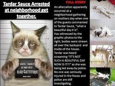 Grumpy Cat - Arrested