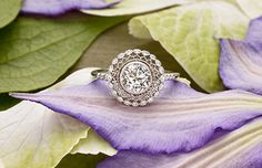 I love this Brilliant Earth ring the details are simple and beautiful!