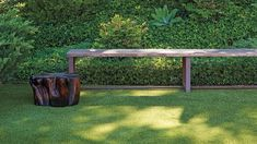 High Temps, Low Maintenance: Your Summer Lawn Care Guide   Martha Stewart