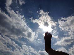 Pisando el cielo Touching the heavens