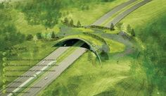 ARC: International Wildlife Crossing Infrastructure Design Competition Finalists: Balmori Associates with StudioMDA, Knippers Helbig Inc., David Skelly, CITA,  Bluegreen, John A. Martin & Associates, and David Langdon