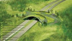 ARC: International Wildlife Crossing Infrastructure Design Competition Finalists: Balmori Associates with StudioMDA, Knippers Helbig Inc., David Skelly, CITA,  Bluegreen, John A. Martin & Associates, and David Langdon