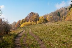 Country Roads, Nature, Naturaleza, Nature Illustration, Off Grid, Natural