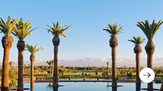 Book Now—30% Off in Morocco  ROYAL PALM BEACHCOMBER MARRAKECH For more details please contact us!  http://exclusiveluxurytravel.ro/ #Morocco  #exotic #beach