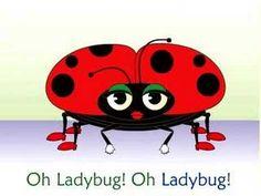 (2) Frank Leto's Ladybug Ladybug Song - YouTube