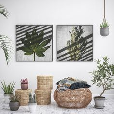 Beautifully boho featuring one of the Playing with Shadows print sets 🌿 Botanical Wall Art, Botanical Prints, Leaf Wall Art, Wall Art Decor, Leaf Prints, Wall Art Prints, Art Prints For Home, Nature Prints, Art Art