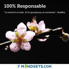 100% Responsable