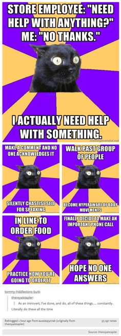 Socially awkward introvert cat meme - hilariously accurate