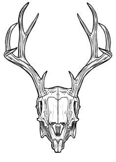 Deer Skulls, Animal Skulls, Animal Skeletons, Wendigo Costume, Antler Drawing, Animal Skull Drawing, Mini Mundo, Rabbit Pictures, Geometric Drawing