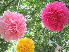 Tissue paper flowers hanging from the trees by pink gingham ribbon