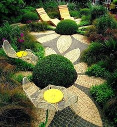 Topiaries And Paving~ Sunflowers In My Garden~ Beautiful!