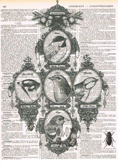Bird.Family Tree.Collage..Antique Book Page.handmade gift.home deco.vintage,retro.french.mixed media.art.nursery.avian.retro.bedroom.den.eco