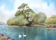 http://images.fineartamerica.com/images-medium/1-swan-lake-dale-ziegler.jpg