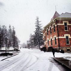 Spring snowstorm in Alfred #alfredu