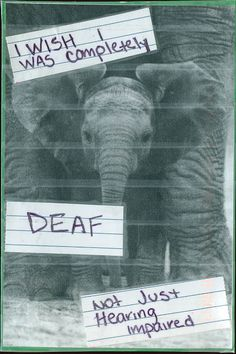 Deaf secret. Post Secret is a continually running community art project in which people share their secrets anonymously on hand made post cards. They may make you laugh or cry but they certainly bring us closer together.