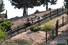 3/10 | Photo de l'attraction Cheyenne River située à La Mer de Sable (France). Plus d'information sur notre site http://www.e-coasters.com !! Tous les meilleurs Parcs d'Attractions sur un seul site web !!