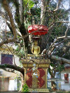 Buda bajo el árbol en Wat Wisunarat