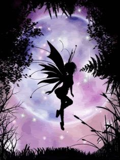 Night Time Fairy photo by angellovernumberone