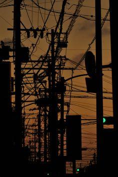 Japan   夕闇電線密林地帯