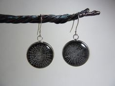 Webs from the feather legged orb weaver preserved in charm drop earrings
