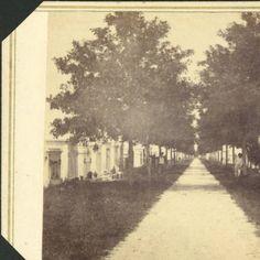 090 - Lafayette Street Cemetery; ca 1864