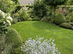 Kleine tuin met gazon