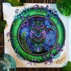 Inspired by & World of Warcraft (Ashenvale, the night elves area, in a very dark way. Secret Garden Coloring Book, Coloring Book Art, Colouring Pages, Adult Coloring, Enchanted Forest Book, Enchanted Forest Coloring Book, World Of Warcraft, Joanna Basford, Johanna Basford Secret Garden