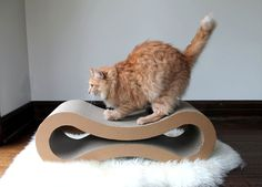 creative kitty furniture (posted from Bored Panda.com)