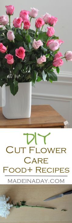 DIY Cut Flower Care