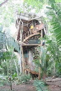 Stay in a tree house in Costa Rica, Swiss Family Robinson style.