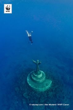 A fisherman swimming down to touch the statue of Christ Of The Abyss for good fortune in the Marine Protected Area of Portofino in the Mediterranean, Italy. 332594