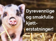 Veganermat.no