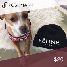 Féline Black Beanie Brand new never worn Féline black beanie. Came in original plastic packaging that I removed to take the covershot! I'm more a dog person 😂 Accessories Hats