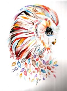 Be the color by Zuhari on DeviantArt Owl Tattoo Drawings, Art Drawings Sketches, Animal Drawings, Cute Drawings, Owl Art, Bird Art, Color Pencil Sketch, Colorful Drawings, Art Sketchbook