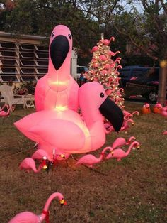 Flamingo Christmas tree!!!