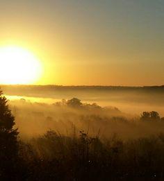 Sunday morning fog in manton ky