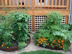 Round Gardens on Pinterest Spiral Garden Herb Spiral