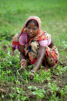 A woman farmer works in a field (no location designated other than Asia) Working People, Working Woman, Underwater Hotel, Human Figure Sketches, Girl Number For Friendship, Female Farmer, Ariana Grande Drawings, Village Photos, Beautiful Women Over 40