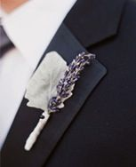 fresh/dried lavender