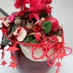 Cyclamen Scholten Pastel (©Oliver Mathys) Christmas Wreaths, Pastel, Holiday Decor, Home Decor, Cake, Decoration Home, Room Decor, Home Interior Design, Crayon Art