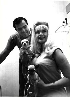 Jayne Mansfield with Chihuahua pups!