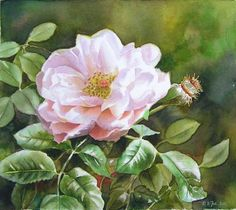 by Doris Joa