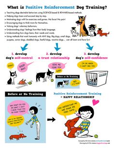 Positive Reinforcement Dog Training by lili.chin, via Flickr