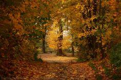 Landscape Photography by Darek Podhajski