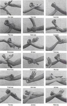 Wing Chun                                                       …