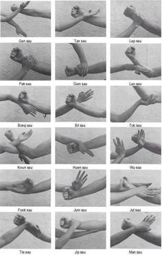 Wing Chun kung fu hands. 18 técnicas de mano vacía con Wing Chun Kung Fu (Ving…