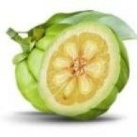 What is Garcinia Cambogia? cambogia cambogia extract extract, cambogia weight loss supplement cambogia effects, cambogia uses, Cambogia Diet cambogia dr oz cambogia weight loss oz garcinia cambogia Garcinia Cambogia Diet, Detox Cleanse For Weight Loss, Body Cleanse, Natural Lifestyle, Dr Oz, Gym Time, Going To The Gym, Get Healthy, Healthy Nutrition