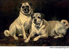 John Emms was an English painter between 1841 and 1912 who created this painting called Pugs.
